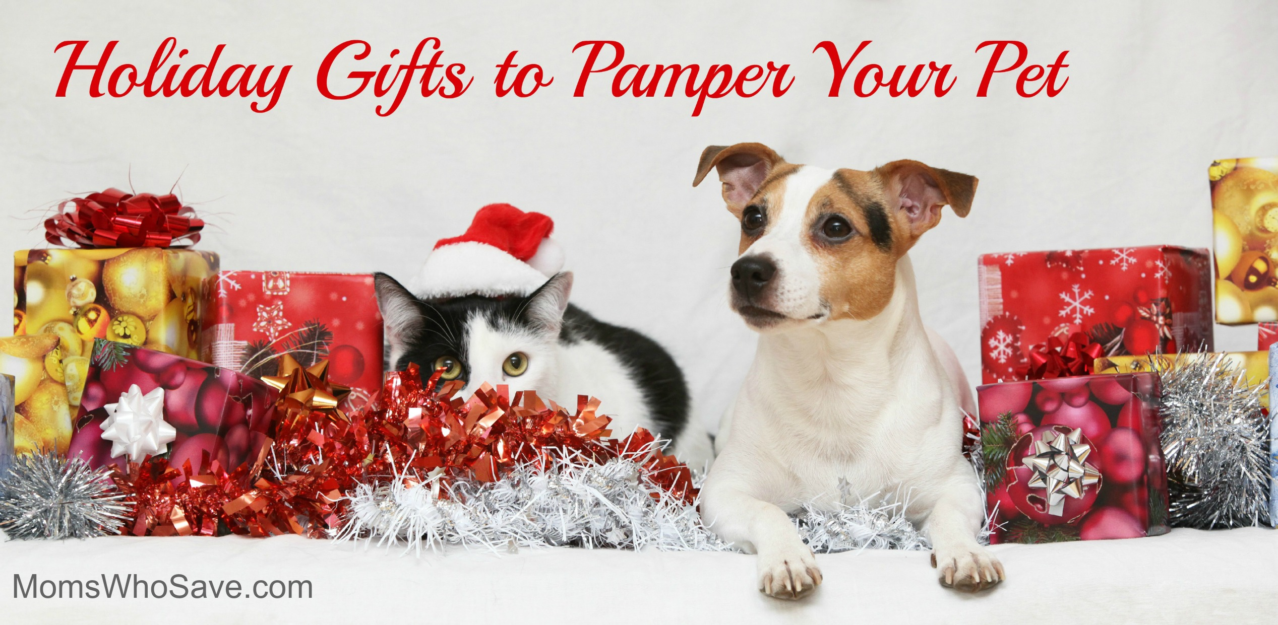 gifts for your pets