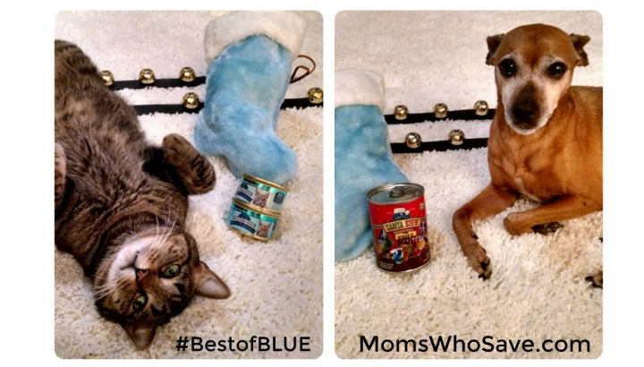 Love Them Like Family, Feed Them Like Family This Holiday Season #BestofBLUE