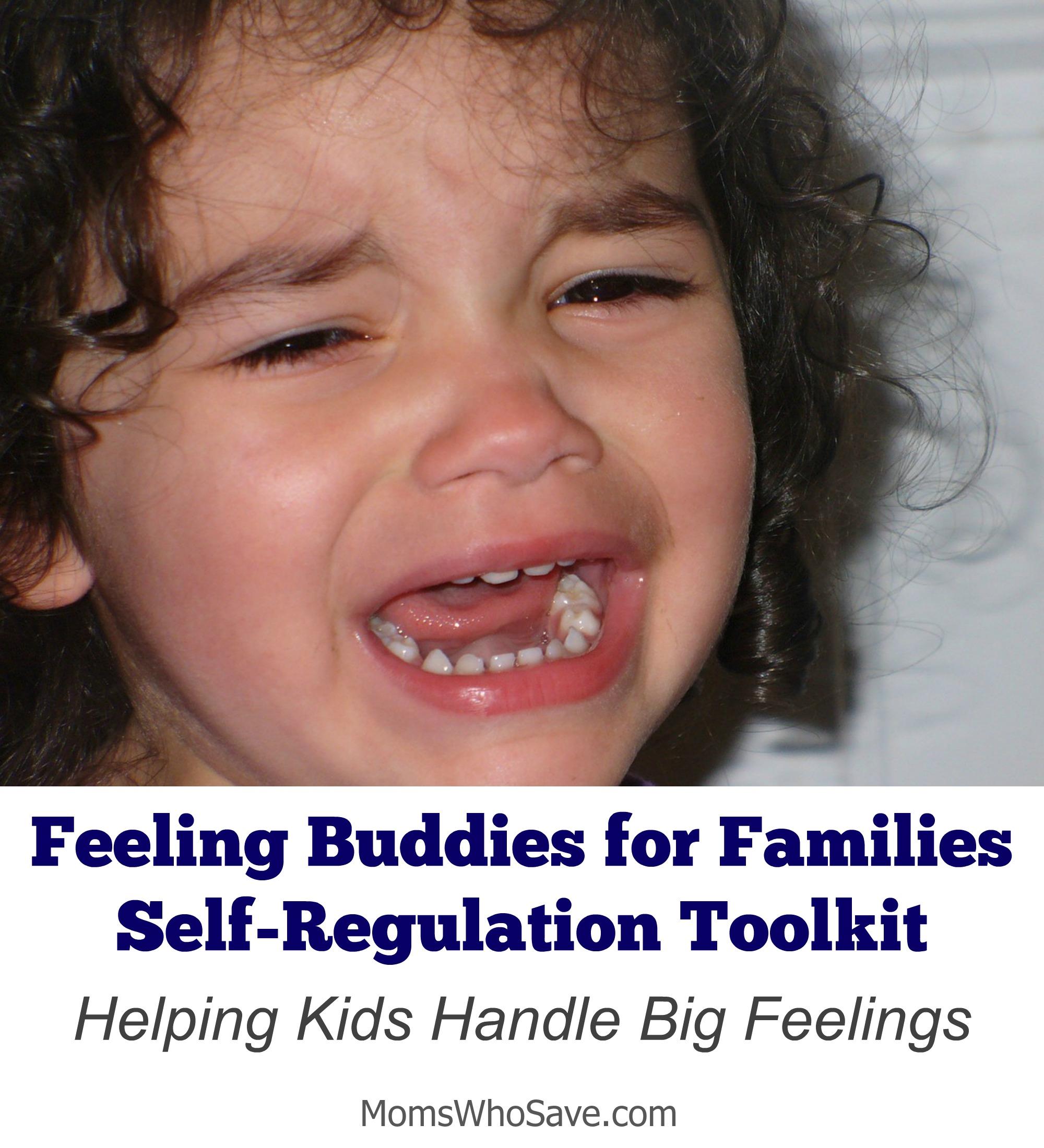 Feeling Buddies for Families Self-Regulation Toolkit — Helping Kids Handle Big Feelings