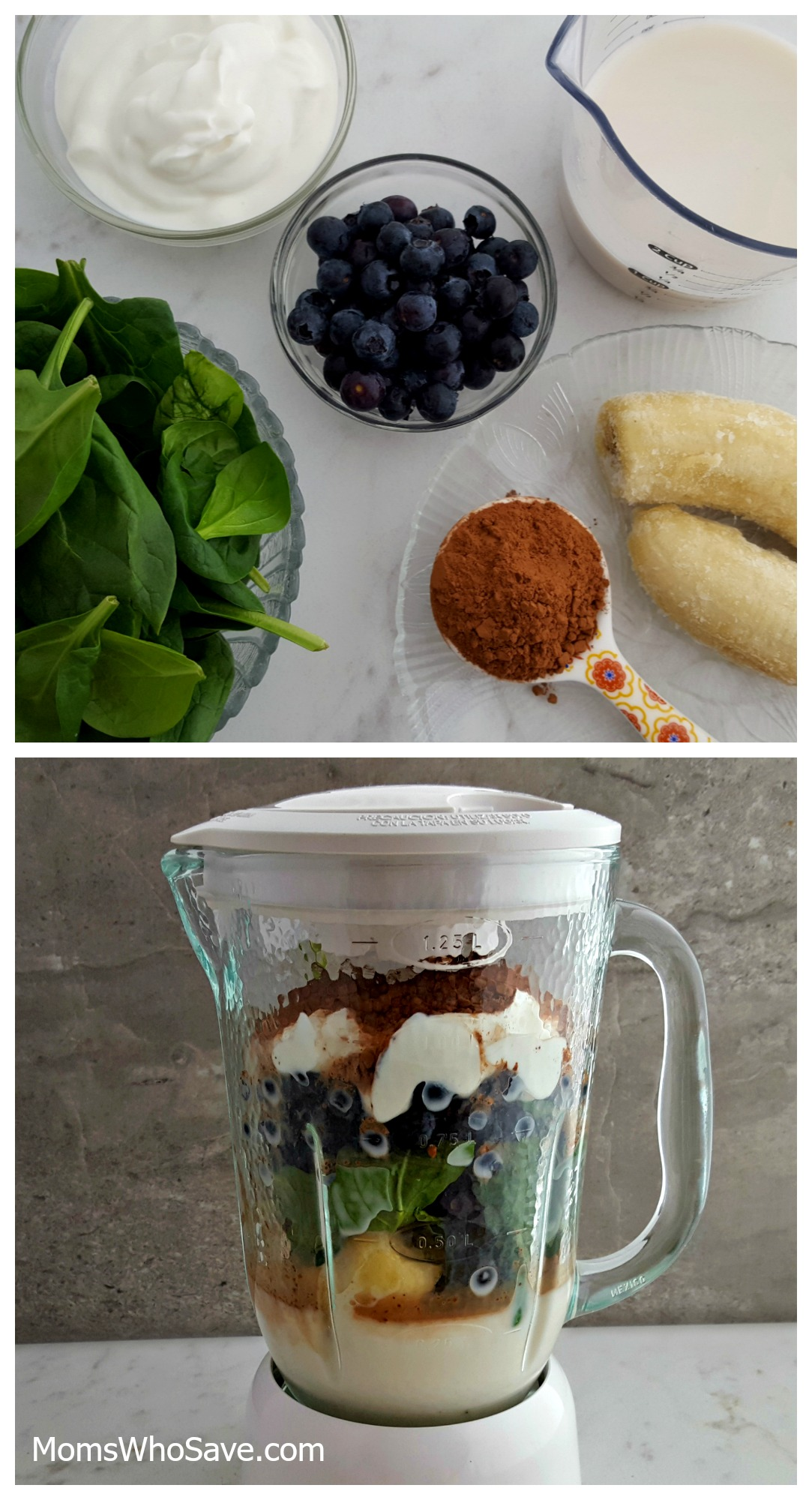 Dark Chocolate Green Superfood Smoothie