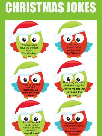 Free Christmas Lunch Box Jokes Printable