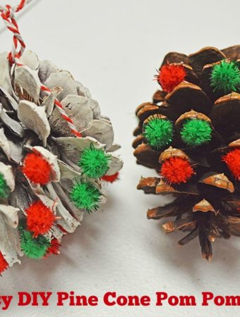 Easy DIY Pine Cone Pom Pom Ornaments