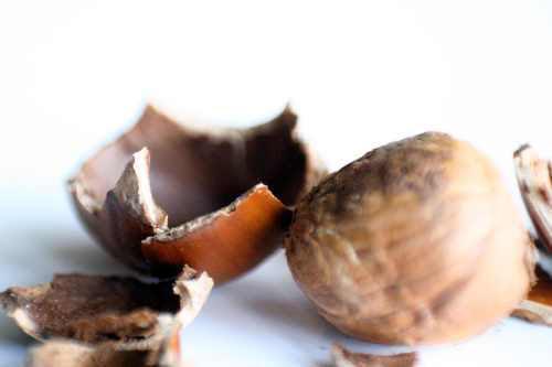 Hazelnut EspressoLip Balm