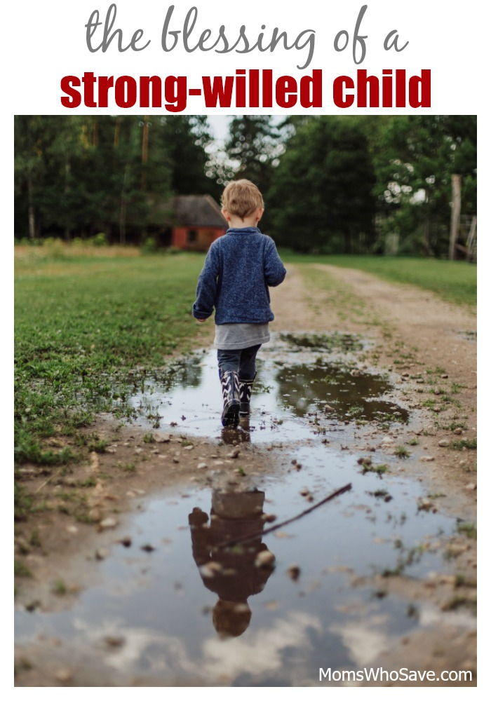 why strong willed children will thrive