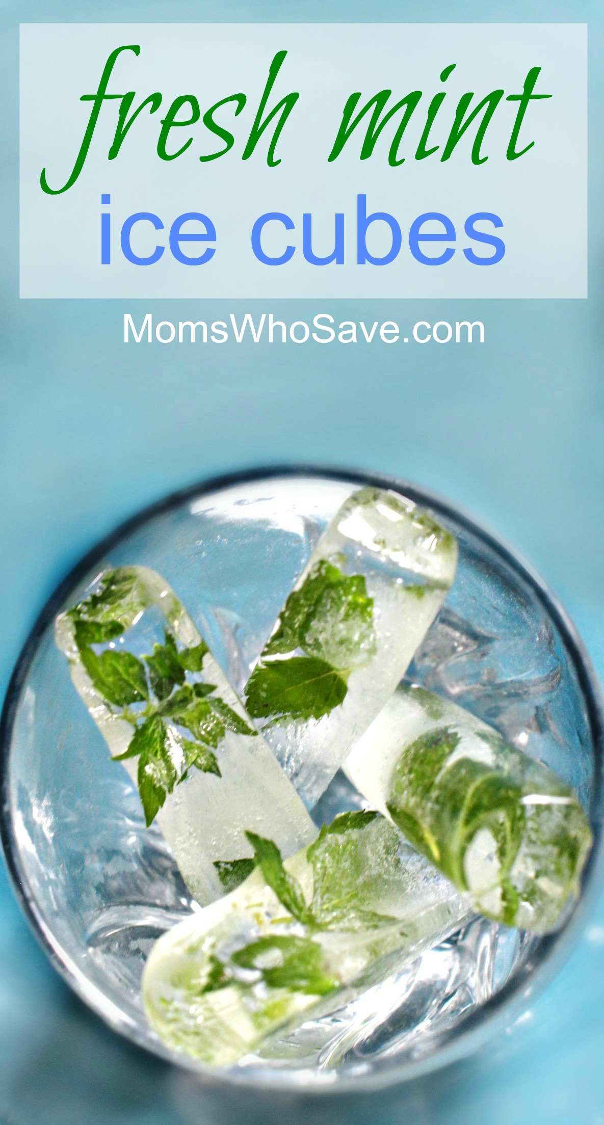how to make minty ice cubes