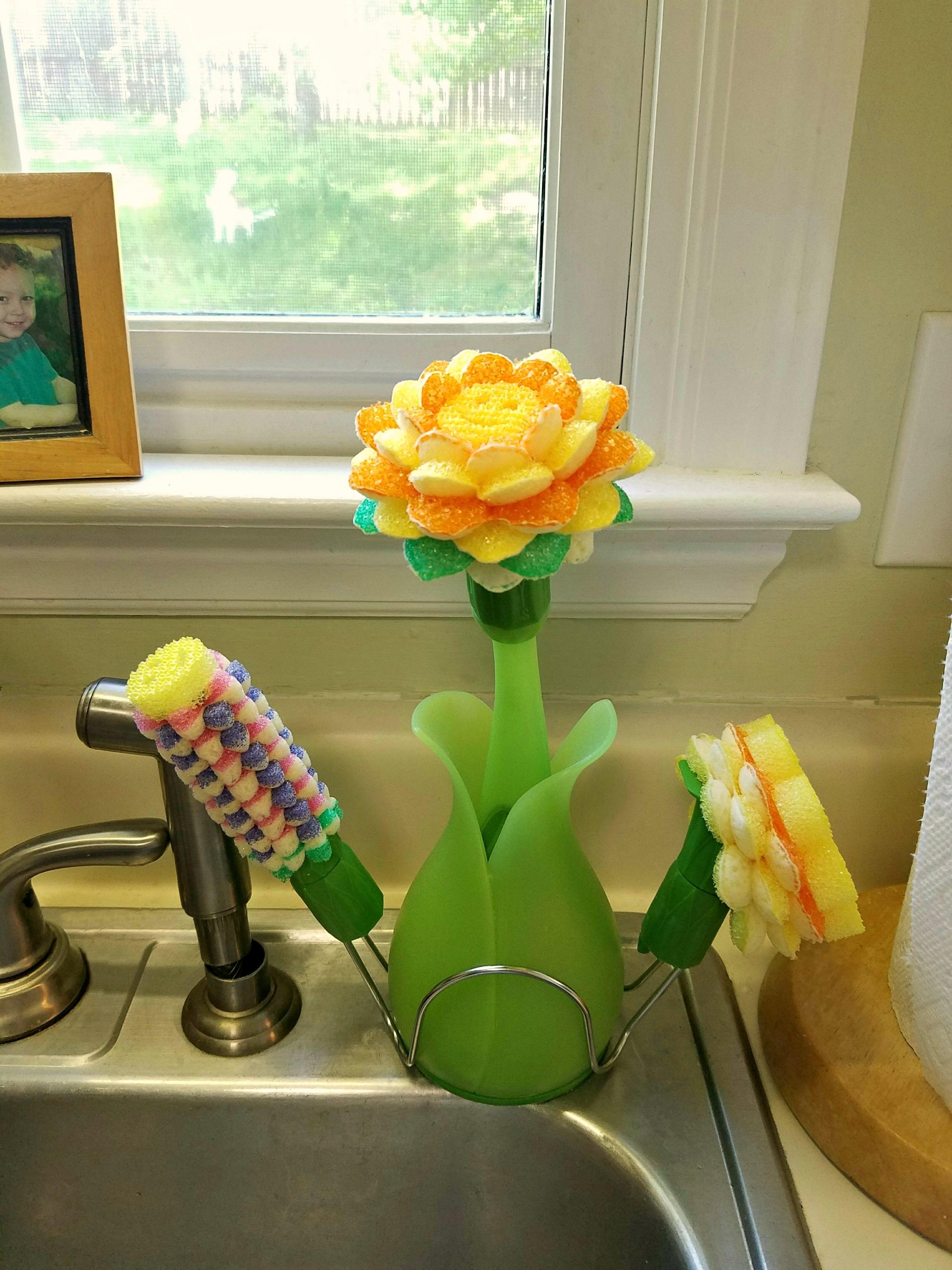 scrub daisy dishwash system