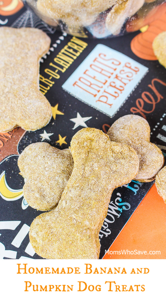 homemade dog treat recipe
