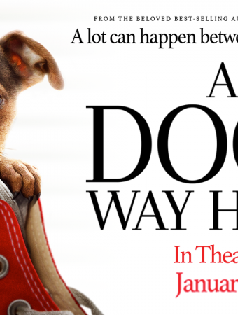 A Dog's Way Home prize pack