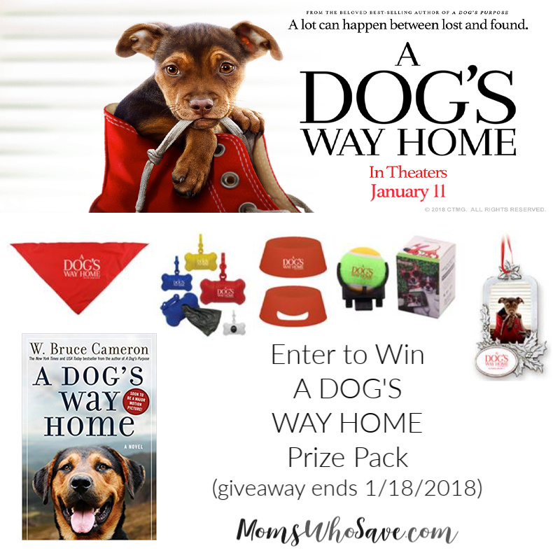 A Dog's Way Home swag bag