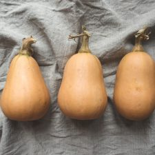 Winter Squash — Our Favorite Varieties, How to Store It, & How to Prepare It