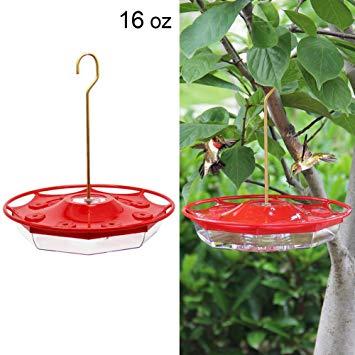 16 oz. Hanging Hummingbird Feeder with 8 Feeding Ports