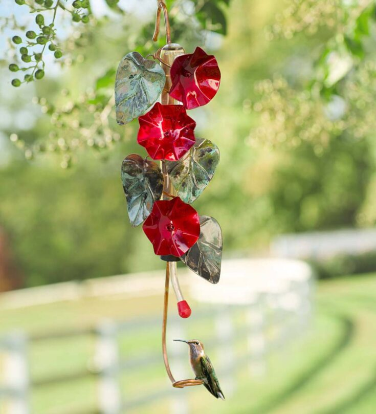 Morning Glory Hummingbird Feeder