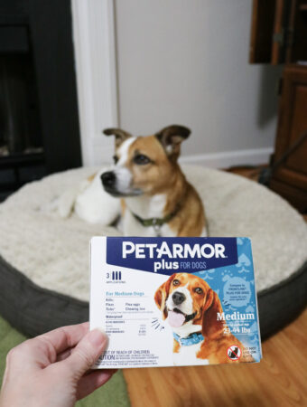 PetArmor Plus flea and tick