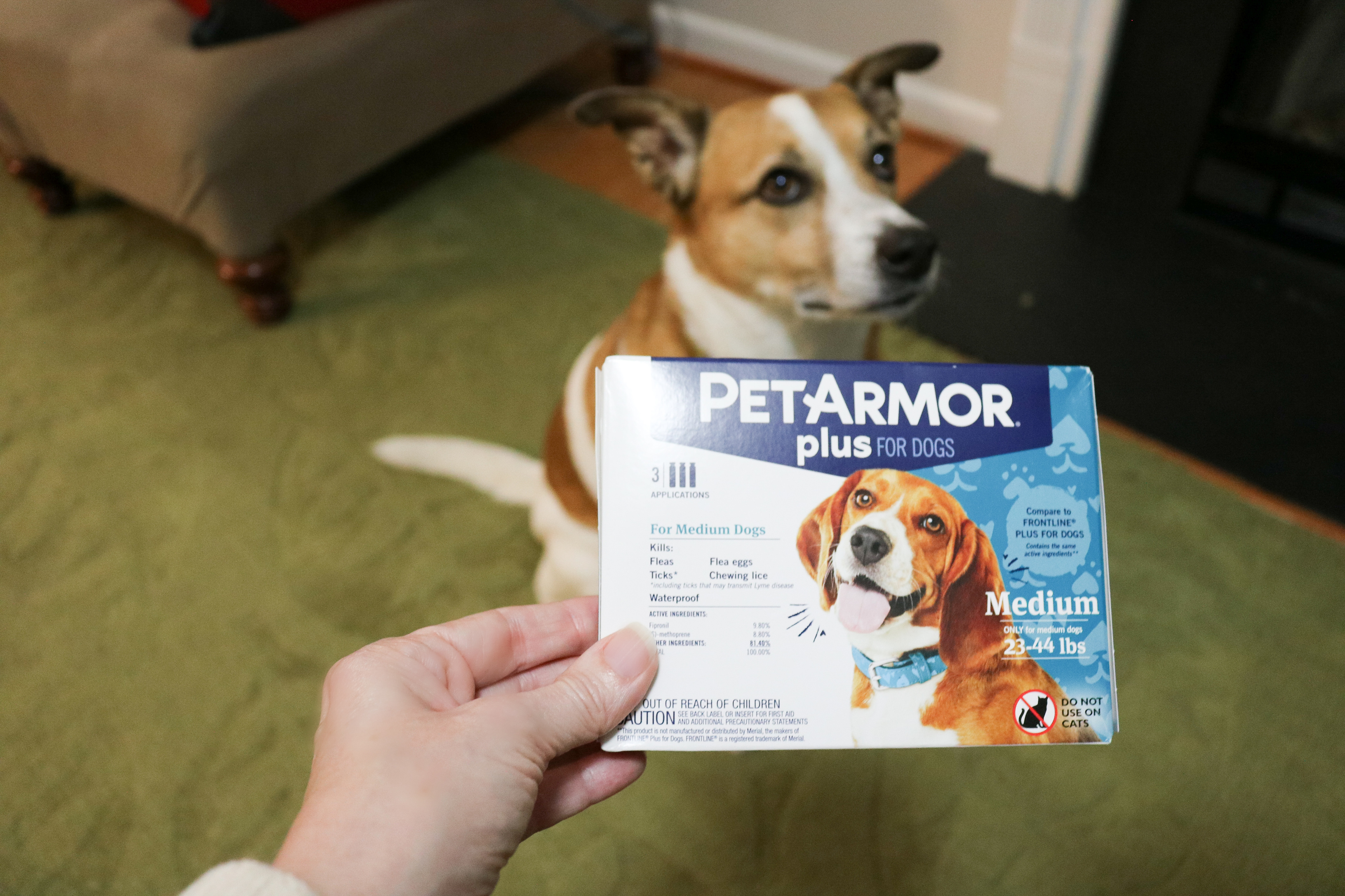 PetArmor Plus flea and tick medication review